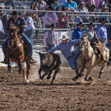 2013 TucsonRodeo #1
