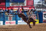2013 TucsonRodeo #2