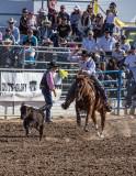 2013 TucsonRodeo #3