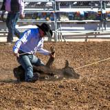 2013 TucsonRodeo #4