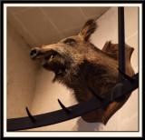 Wild Boar with Meat Hooks