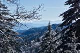 Clingmans Dome Rd Snow 6