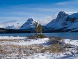 20121022_Bow Lake_0054.jpg