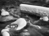 20121022_Mosquito Creek_0088.jpg