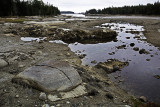 Grey Rocky Beach, Deer Isle