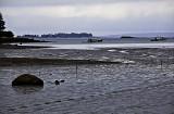 Moody, Muddy Low Tide, Deer Isle