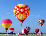 Balloon Trio 11x14.jpg