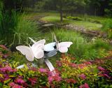 Garden Flight 11x14.jpg
