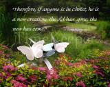 New Life in Christ 11x14.jpg