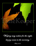 Psalm 30 weeping 11x14 sRGB.jpg