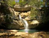 cedar falls horizontal 11x14.jpg