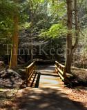 hocking footbridge 11x14.jpg