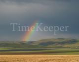 rainbow 11x14.jpg