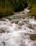 roaring water 11x14.jpg
