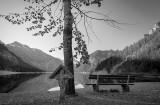 Lake Plansee in Tyrol