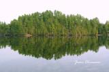 Miroir Naturel