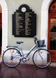 The bicycle which liked icre-cream, but could not choose...