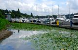 Lake Washington 4