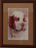 In memoriam CH Nexus Nicolette TD  4/8/2002- 3/4/2013