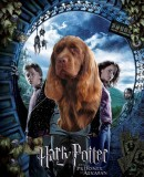 Harry Potter book cover 3b.jpg