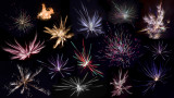 newyear_2012_fireworks