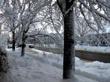 Duchesneau sous la neige
