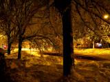 Nuit jaune enneigée