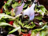 salade verte d'Yvette