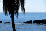 Pêche coté mer des Caraibes