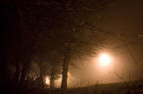 7th January 2013  mist