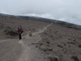 alpine desert