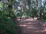 Almost to Mweka gate