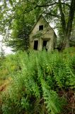 The Abandoned Cottage - Swan's Island