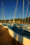 The Fleet - Castine Yacht Club