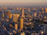 From-Mori-TowerPA01083310-01-2012-15-03-30.jpg