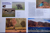@Kyoorius-14-Magazine(Jan-Mar)