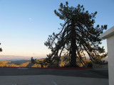 Mount-Hamilton-2012-(209).jpg