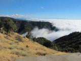 Mount-Hamilton-2012-(43).jpg