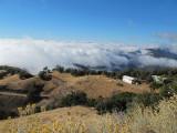 Mount-Hamilton-2012-(45).jpg