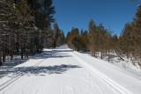 xc_skiing_2013