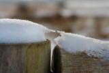 Tiny Winter Scenes