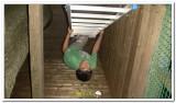 kasterlee_2011_kamp_2_269_20120419_1726780342.jpg