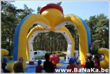 oasis_131_20121002_1176519020.jpg
