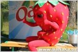 oasis_170_20121002_1264699954.jpg