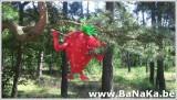 oasis_205_20121002_1783812448.jpg