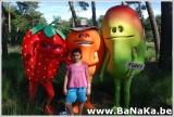 oasis_36_20121002_1380864465.jpg