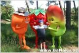 oasis_47_20121002_1340856384.jpg