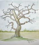 Old Tree sketch