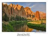 Mornig Glory Wall.jpg