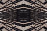 Escher Lines